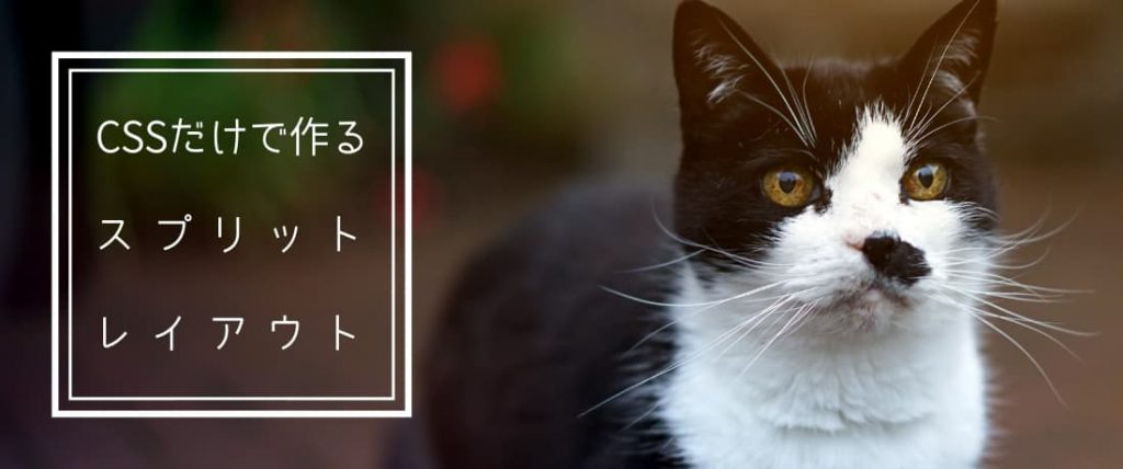CSSだけで作るスプリットレイアウト【レスポンシブ対応】